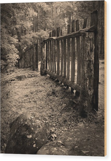Old Fence Wood Print