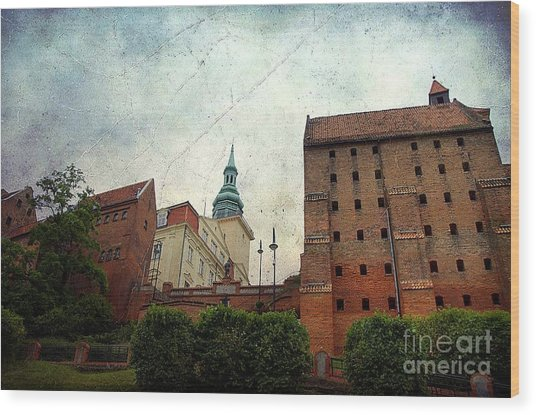 Old Granaries In Grudziadz Poland Wood Print