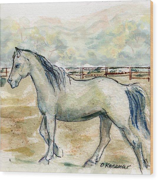 Old Gray Mare Wood Print by Olga Kaczmar