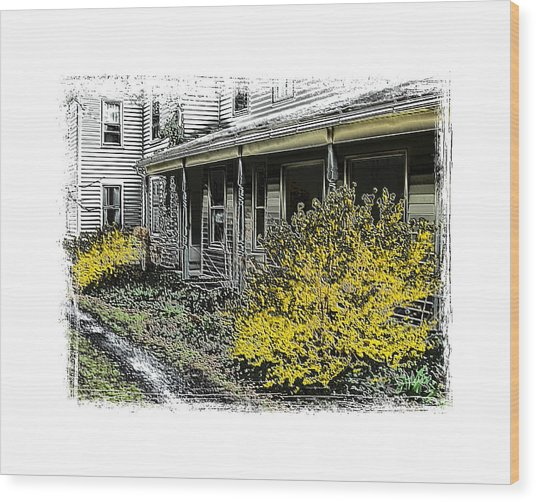 Old Homeplace Wood Print by Robert Boyette