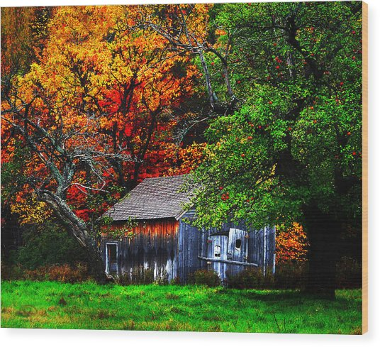 Old Homestead And The Apple Tree Wood Print by Vicki Lea Eggen