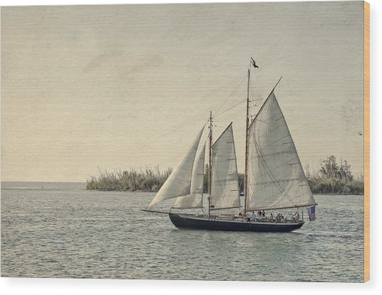 Old Key West Sailing Wood Print
