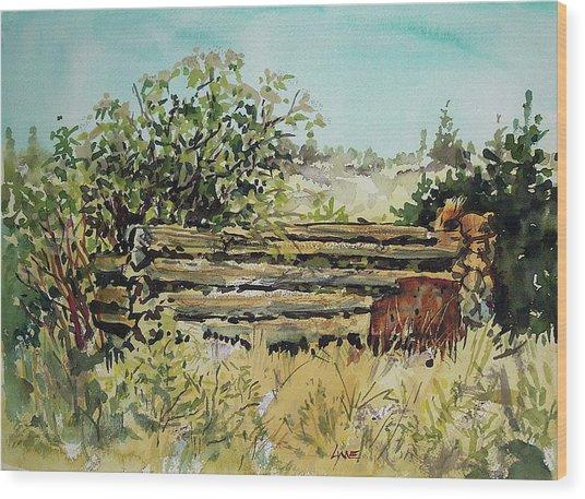 Old Log Shed Wood Print