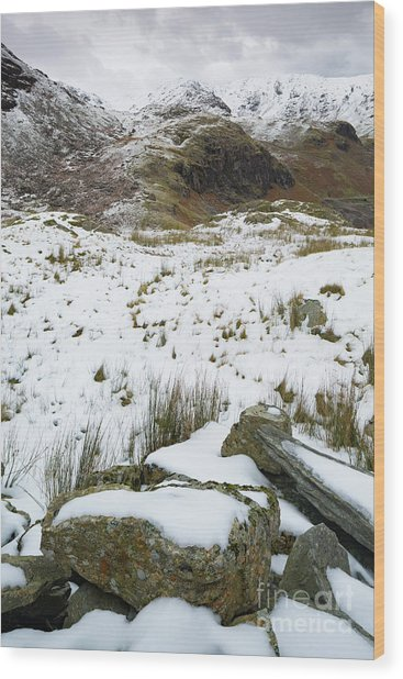 Old Man Of Coniston Wood Print
