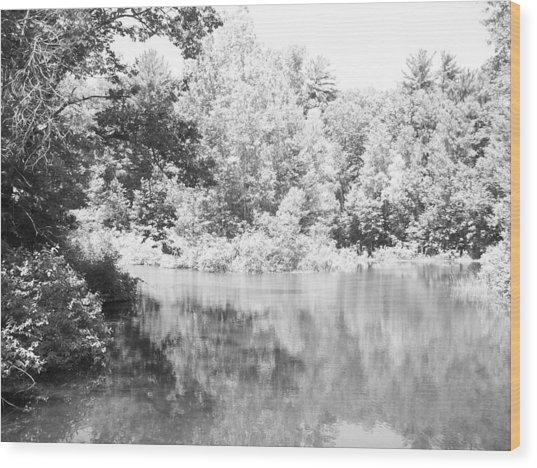 Old Michigan Creek Wood Print by Derek Clark