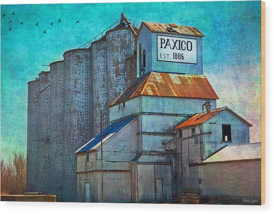 Old Paxico Kansas Grain Elevator Wood Print