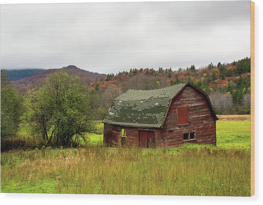 Old Red Adirondack Barn Wood Print