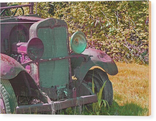 Old Rusty Truck C1002 Wood Print by Mary Gaines