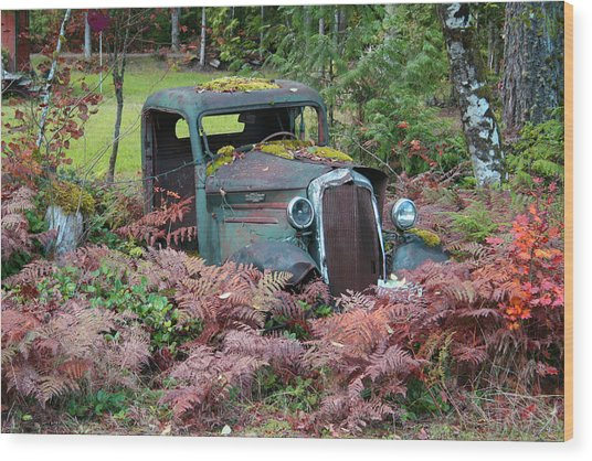 Old Rusty Truck I C1000 Wood Print by Mary Gaines