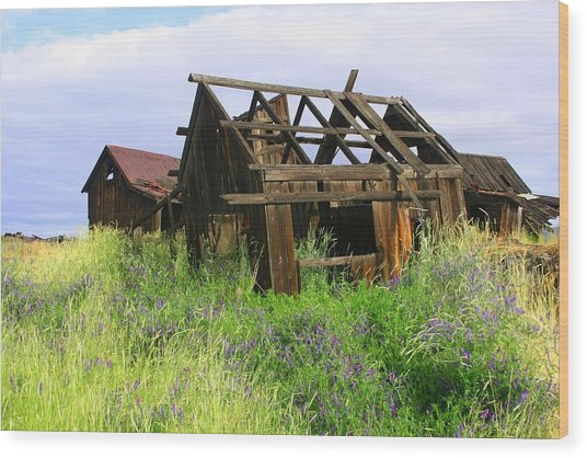 Old Shack At The Gorge Ba 3000 Wood Print by Mary Gaines
