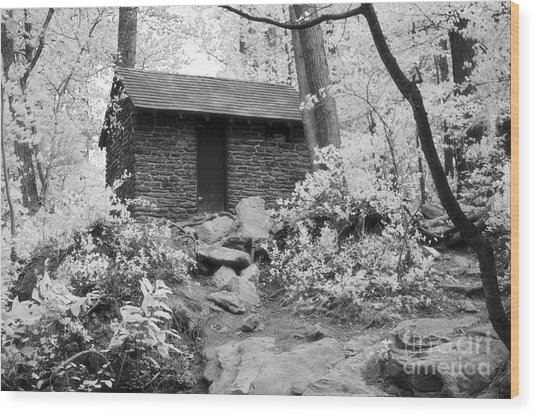 Old Shack Wood Print