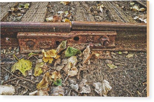 Old Tracks Wood Print