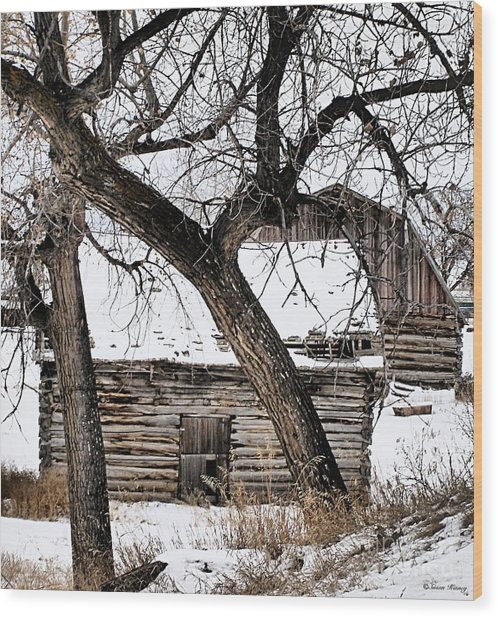 Old Ulm Barn Wood Print