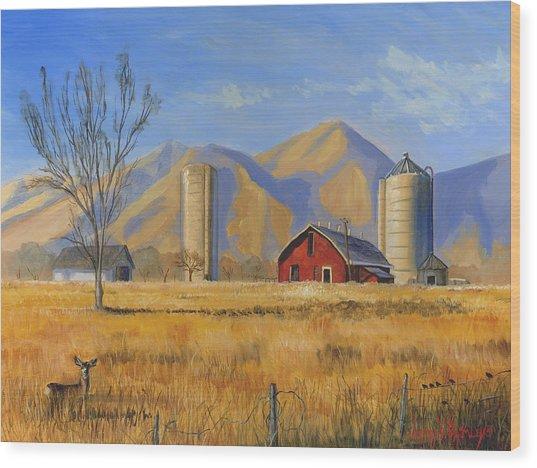 Old Vineyard Dairy Farm Wood Print by Jeff Brimley