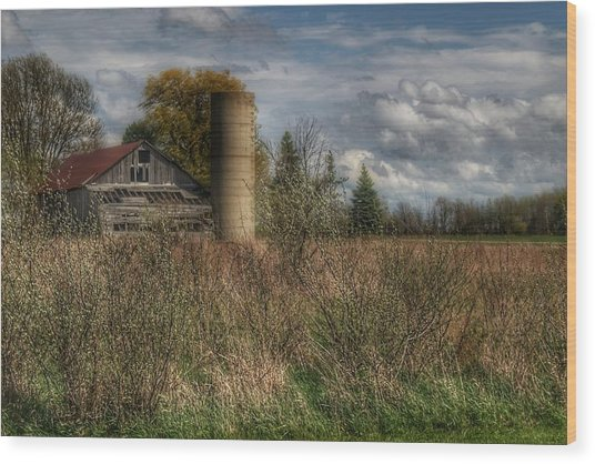 0034 - Old Wooden Barn And Silo Wood Print