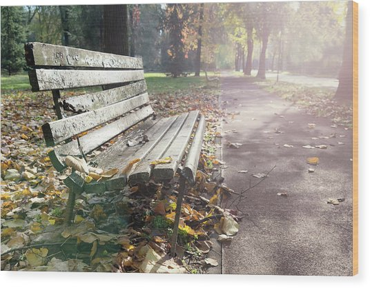 Rustic Wooden Bench During Late Autumn Season On Bright Day Wood Print
