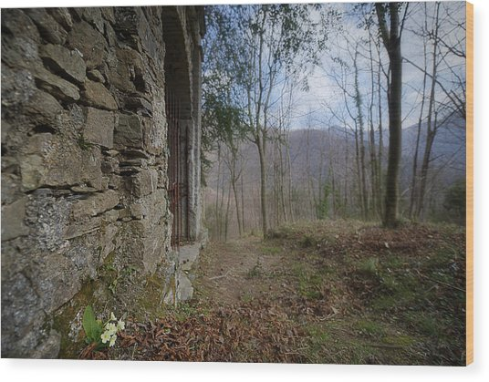 Wood Print featuring the photograph Old Woods Iron Gate With Flowers And Mountains by Enrico Pelos