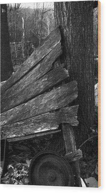 Olddoornextdoor21-23 Wood Print by Curtis J Neeley Jr
