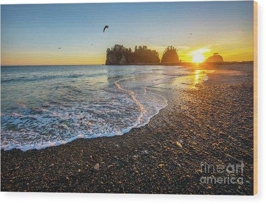 Olympic Peninsula Sunset Wood Print