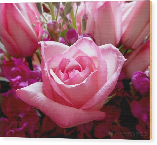 Ombre Pink Rose Bouquet Wood Print