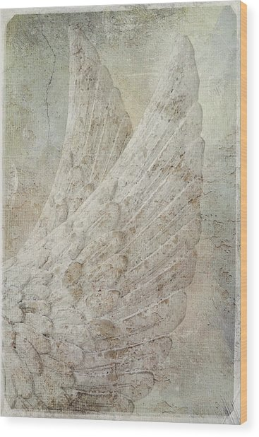 On Angels Wings Wood Print