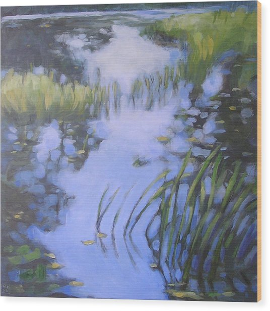 On Calm Reflection Wood Print by Mary Brooking