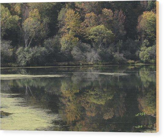 On Lethe's Bank Wood Print