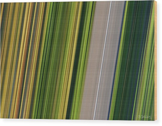 On Road II Wood Print