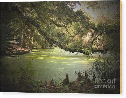 On Swamp's Edge Wood Print