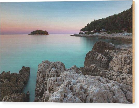 On The Beach In Dawn Wood Print