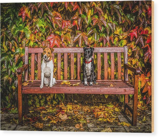 On The Bench Wood Print