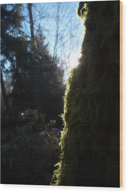 On The Egde Of Light Wood Print by Ken Day