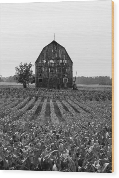 Wood Print featuring the photograph On The Farm by Rosemary Legge