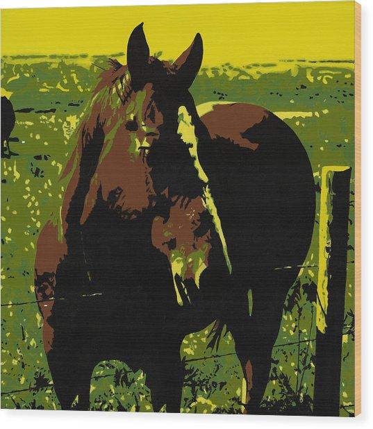 On The Range - Red Wood Print by Sonja Olson