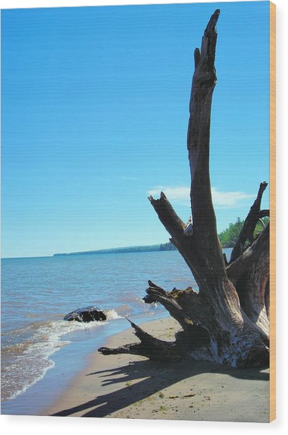 On The Water Front Wood Print by Peter Mowry