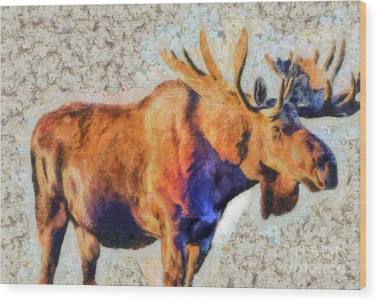 One Handsome Moose Wood Print