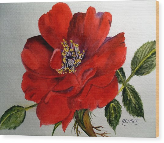 One Lone Wild Rose Wood Print