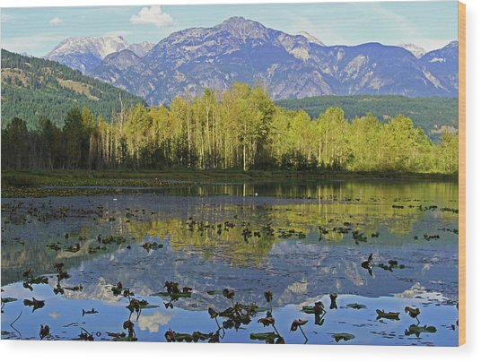 One Mile Lake 1 Wood Print by Walter Fahmy