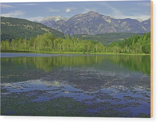 One Mile Lake Reflections 1a Wood Print by Walter Fahmy