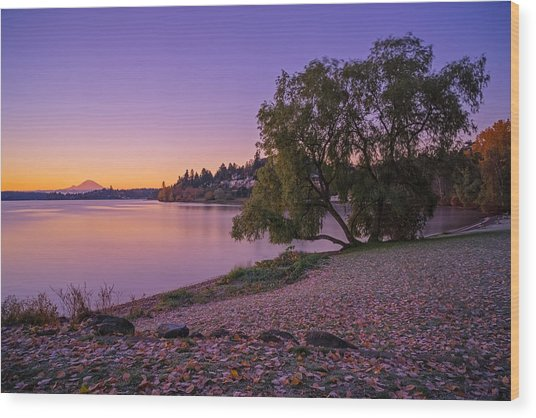 One Morning At The Lake Wood Print