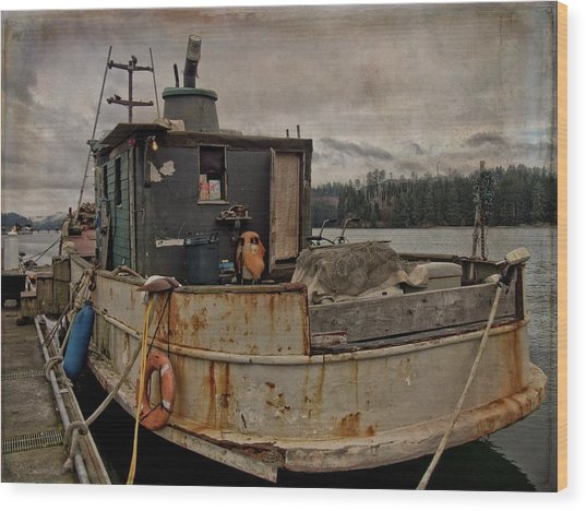 Wood Print featuring the photograph One Salty Dog by Thom Zehrfeld