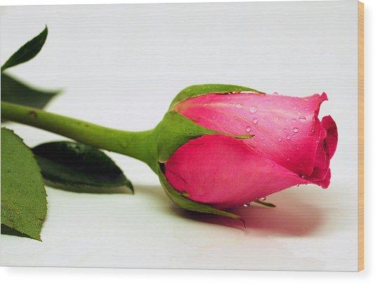 One Single Rose Wood Print