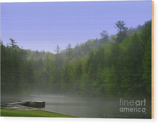 One Spring Morning Wood Print by Debra Straub