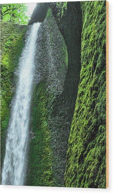 Oneonta Falls  Wood Print