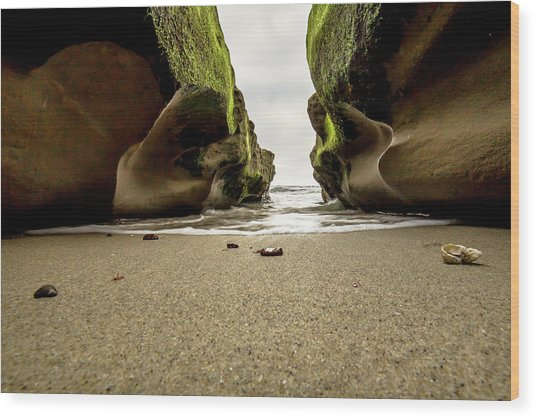 Only At Low Tide Wood Print
