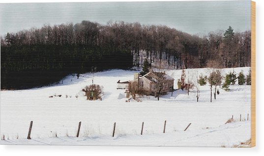 Ontario Winter Wood Print by Cabral Stock