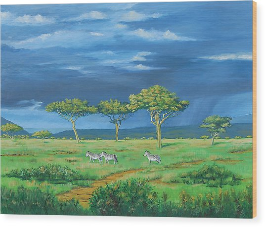 Open Plains Wood Print by Deon West