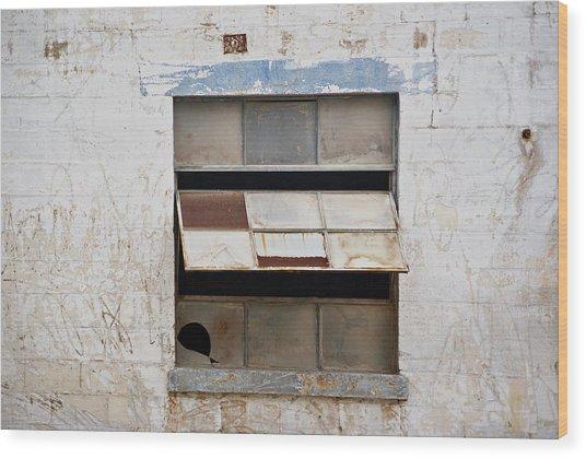 Opened Window Wood Print
