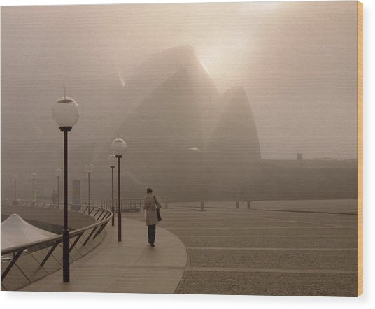 Opera House In The Fog Wood Print by Barry Culling