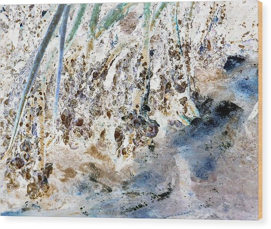 Mangrove Shoreline Wood Print